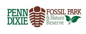 fossil prep penn dixie fossil park scouts