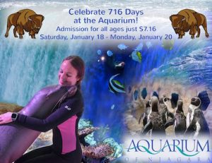 716 Days at the Aquarium of Niagara, Niagara Falls USA attraction