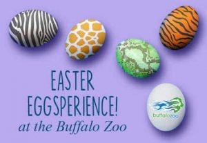 Easter Eggsperience at the Buffalo Zoo