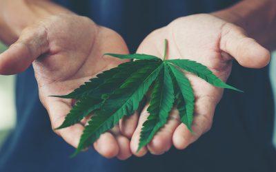 Cannabis-Friendly Activities in the Buffalo Niagara Region