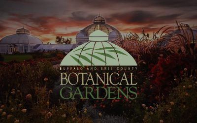October Highlights at the Botanical Gardens