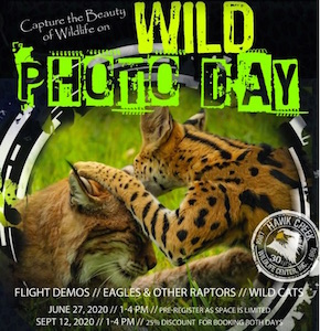 Hawk Creek Photo Days, Hawk Creek Wildlife Center, Welcome 716
