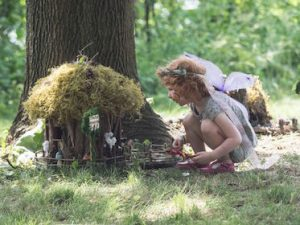 Artpark's Fairy House Festival, Welcome 716