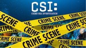 Virtual CSI-Crime Sea Investigation, Aquarium of NIagara, Welcome 716
