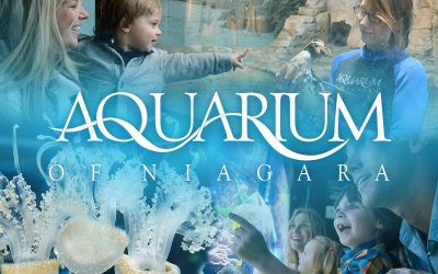 Aquarium of Niagara: Upcoming Events