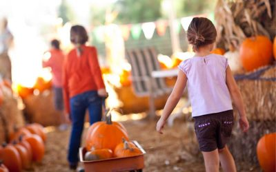 Beyond the Couch: Outdoor Fall Fun Ideas