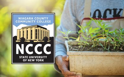 Cannabis Courses at Niagara County Community College