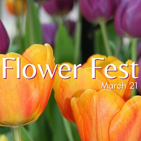Flower Fest at the Botanical Gardens, Buffalo and Erie County Botanical Gardens, Welcome 716