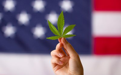 A Look at Cannabis Legalization in New York State